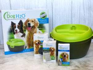 Psí fontánka - Dog H2O